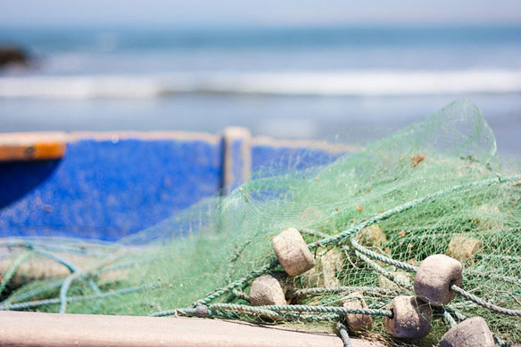 Empty Nets in Louisiana Three Years After The Spill