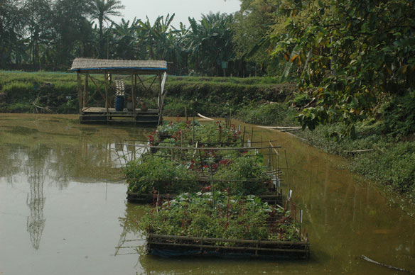 floating-gardens