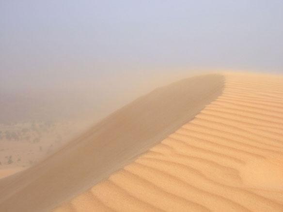 NASA's 2013 HS3 Hurricane Mission to Delve into Saharan Dust
