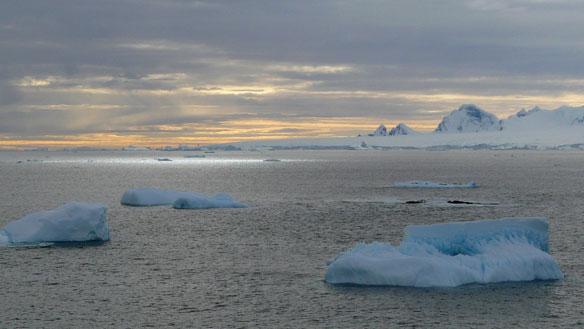 No Deal On Huge Antarctic Marine Reserves