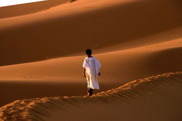 Desert Solar Power: Opportunities For Green Energy, Yet Challenges In Application