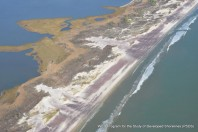 Decade of Fire Island Research Available to Help Understand Future Coastal Changes