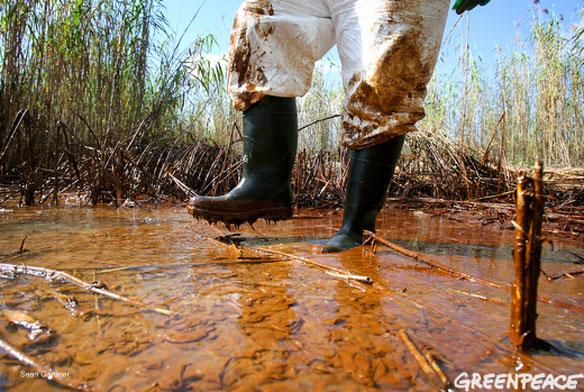 gulf-oil-spill-greenpeace
