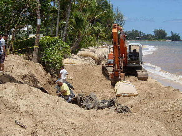 Scientists Urge Shoreline Retreat From Hawaii's Eroding Beaches
