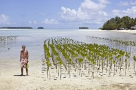 The Human Element of Mangrove Management