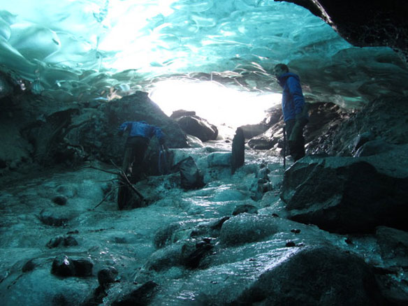 Melting Mendenhall Glacier Reveals Ancient Forest