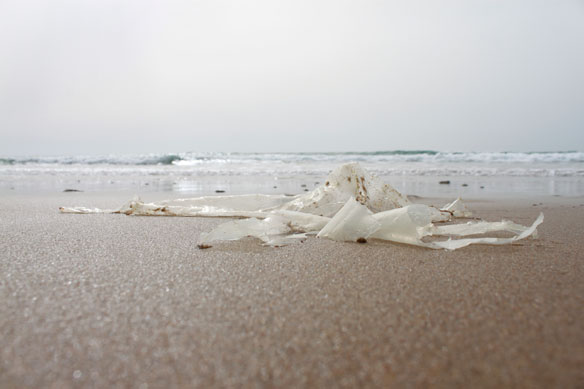 Plastic Pollution in Namibia