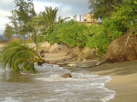 coastal-erosion-oahu