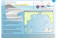 No Solid Mass of Debris from Japan in the Ocean