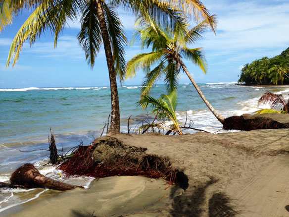 Is there gold in the black sand beaches of costa rica for Black sand beaches costa rica