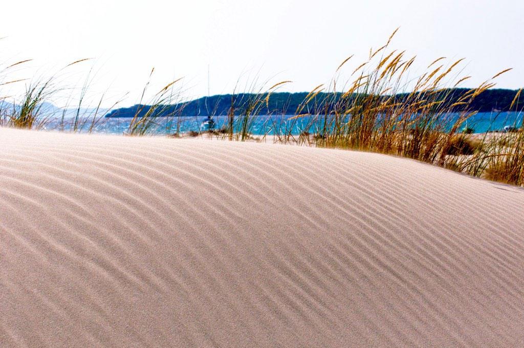 Town Neck Beach Eroding Despite Effort To Rebuild Dunes