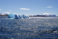 Living Cold-Water Coral Reef Discovered Off Greenland