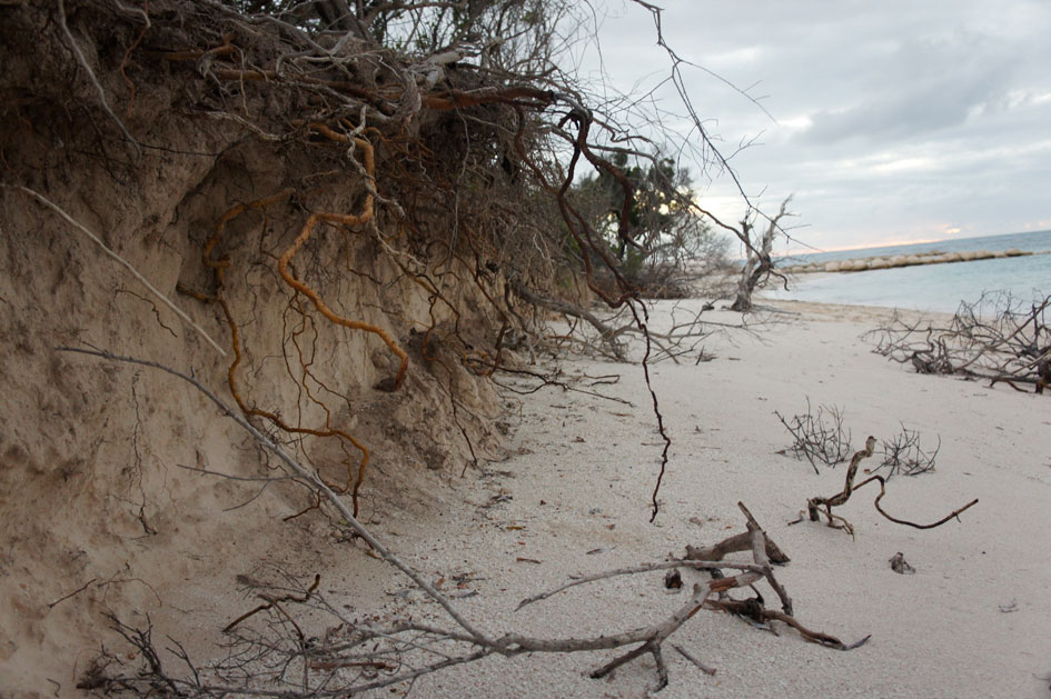 Research Pending into Old Bar beach Erosion, Australia