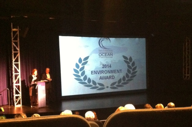 Sand Wars: Environment Award 2014 Winner At The 11th Annual San Francisco International Ocean Film Festival