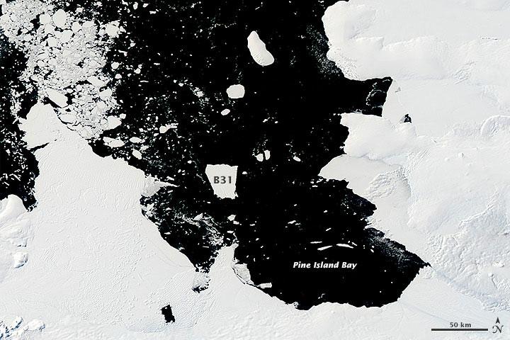 Huge Antarctic Iceberg Headed For Open Ocean