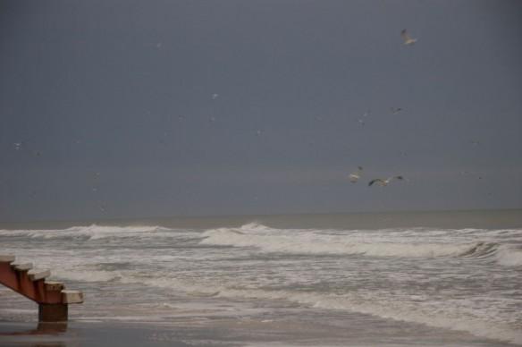 coastal-erosion-florida-daytona