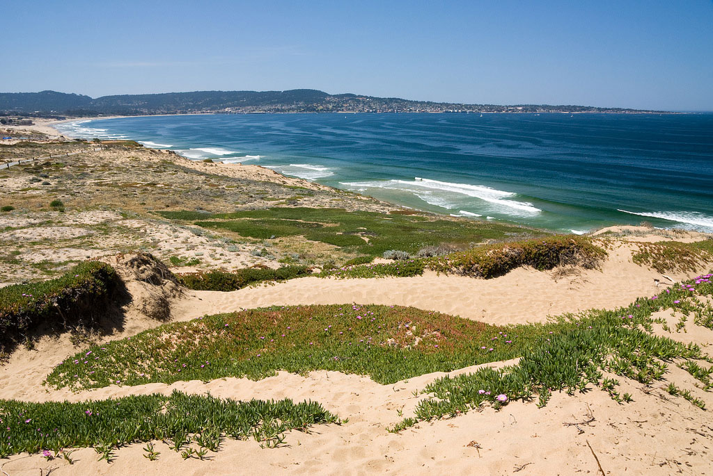 Beach Sand Mining in Monterey Bay Causes a Dustup