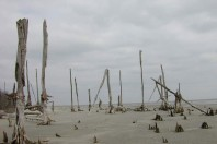 Hurricane Sandy Impacts Did Not Contribute to Subsequent Storm Flooding, A Study