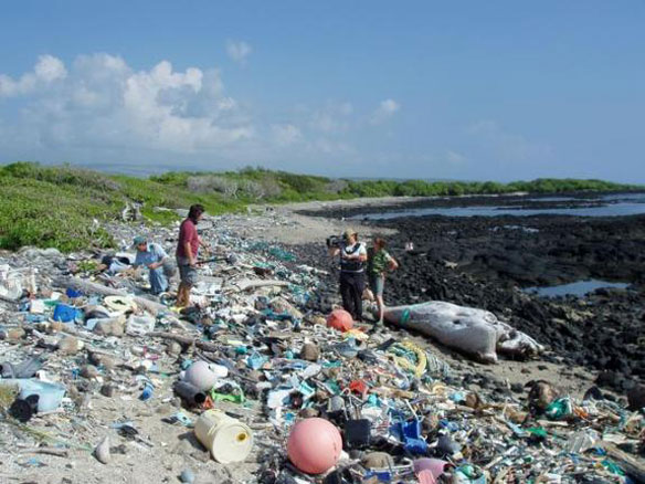 Plastic Legacy: Humankind's Trash Is Now a New Rock