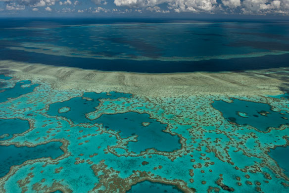 Great Barrier Reef Protecting Against Landslides, Tsunamis