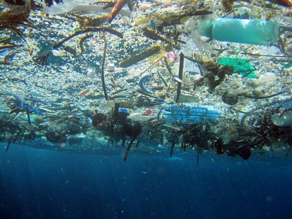 269,000 Tons of Plastic Pollution Floating in World's Oceans