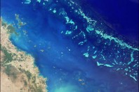 Dumping Ban Urged for Australia's Iconic Reef