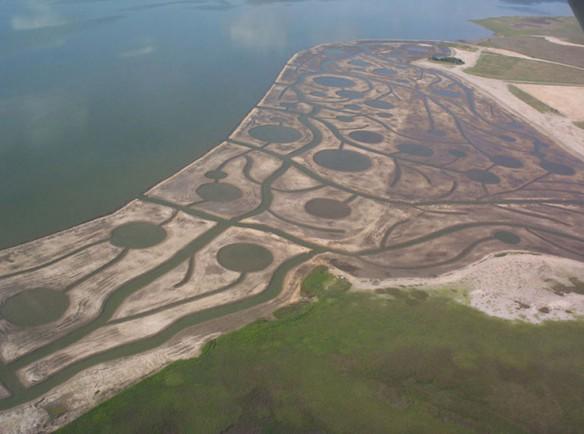 marsh-restauration-texas