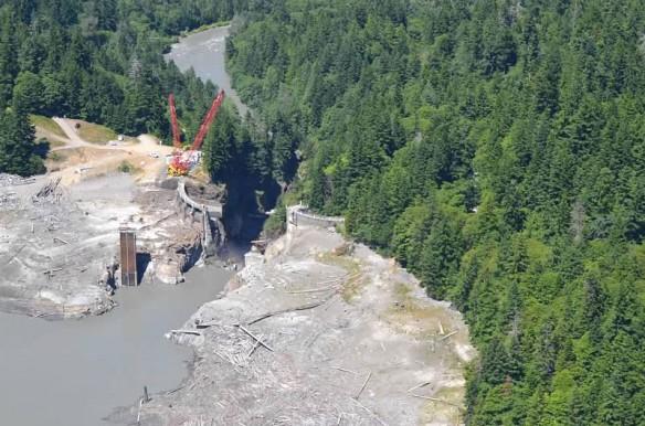 psds-elwha-dam-removal