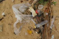 Plastic Pollution and Chile Coastline, The Latest 5 Gyres Mission