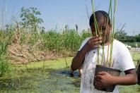 louisiana-wetland-planting-2
