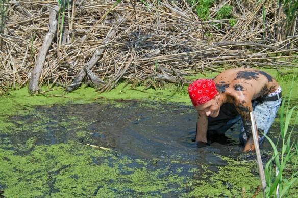 wetland-planting-louisiana-1