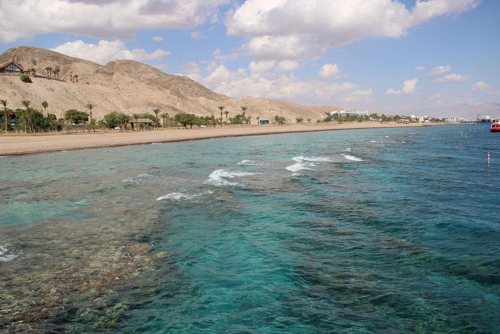 Oil Spill Floods into Israeli Nature Reserve