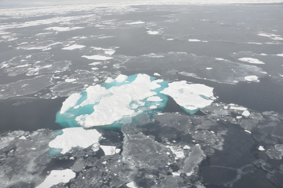Rising Air and Sea Temperatures Continue to Trigger Changes in the Arctic