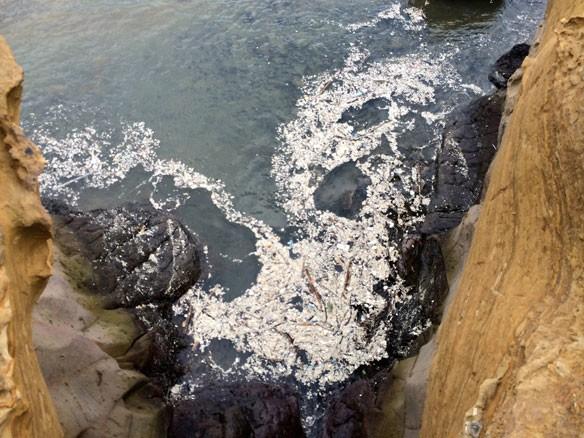 plastic-pollution-coastal-care-taiwan