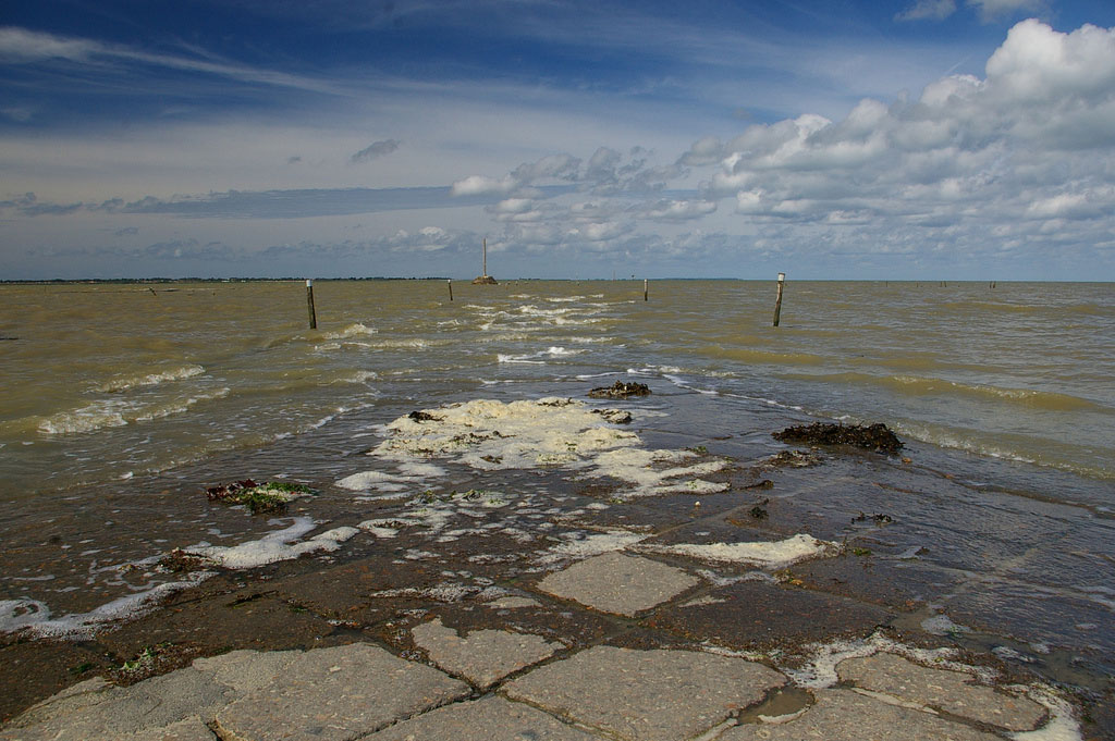 Facing Coastal Erosion: a Dilemma for the Residents