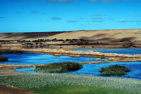Safeguarding Africa's Wetlands a Daunting Task