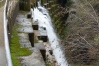 California Water Board Supports Searsville Dam Removal