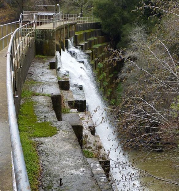 Searsville-dam