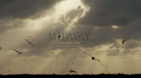 midway-chris-jordan