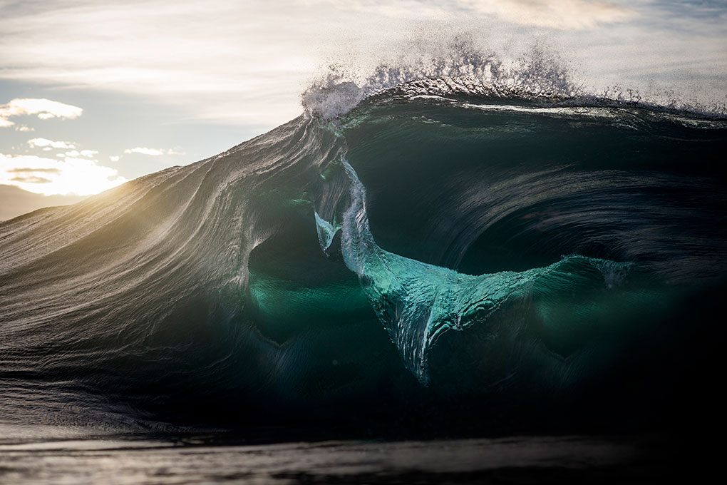 Light Leak – II; By Ray Collins