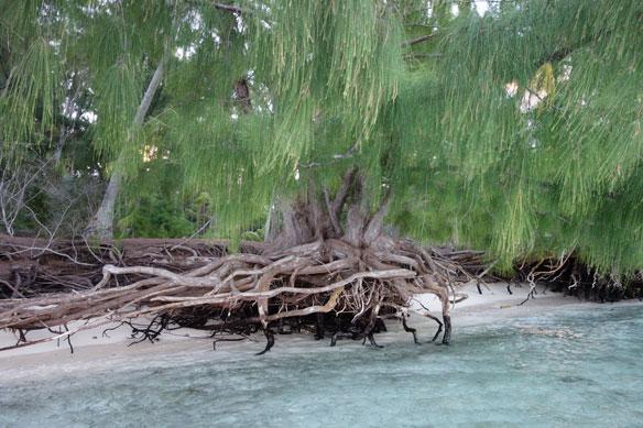 Fiji: Beach Erosion