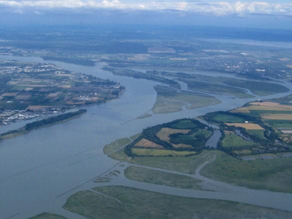 fraser-river-delta