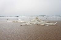 Plastic Refuse; By Santa Aguila Foundation