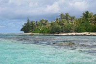 Coral reefs 'will be overwhelmed by rising oceans