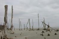 Rule change may threaten coastal areas