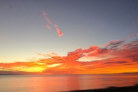 Indian Summer, Channel islands; By Santa Aguila Foundation