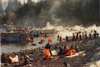 Minimal Advances in Oil Spill Cleanup Since Valdez Spill