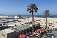 Rewilding Santa Monica's thoroughly artificial beach