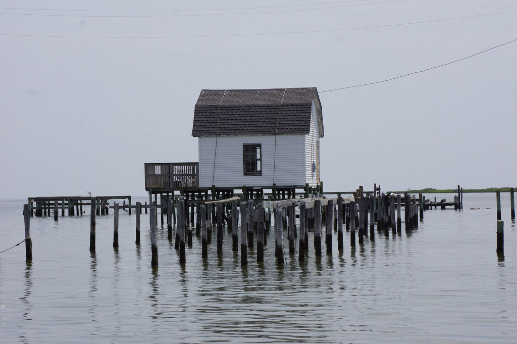 727 People on Chesapeake Bay Island Could Become America's First 'Climate Refugees'