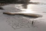Sand artist on Carmel Beach creates beauty with nature